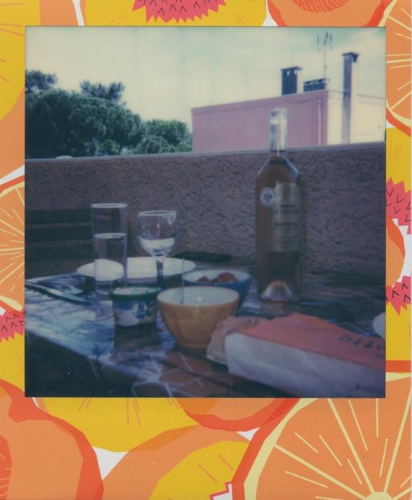 polaroid-10-summer-4